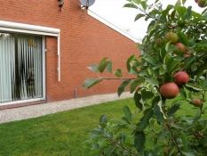 Zum Gästebuch gehören die Apfelbäume auf dem gepflegten Grundstück vom Ferienhaus Kolks Neuharlingersiel an der Nordsee, moderner Bungalow für 4 Personen nahe Strand und Hafen